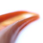 Caramels spécialités